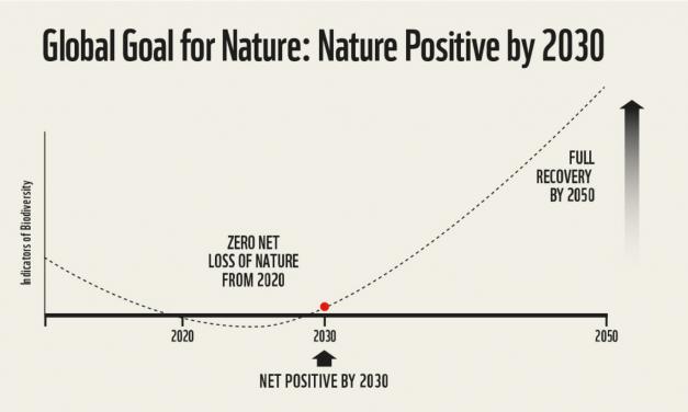 Unapređenje poslovnog razumijevanja Nature pozitive – Pozitivno za prirodu